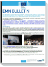 Cover page of 8th EMN Bulletin