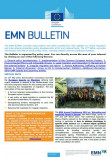 Cover EMN Bulletin 11th Edition