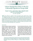 Cover page CEPS - Policy Brief N°240 Labour Immigration Policy in the EU